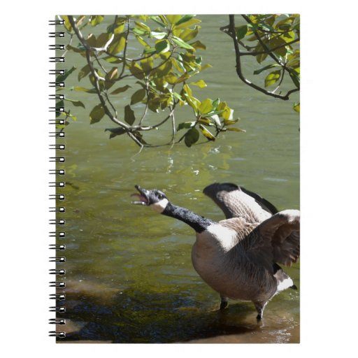 Angry Bird 3 Spiral Notebook