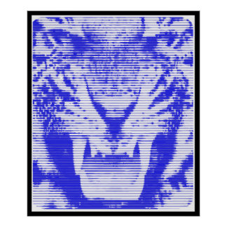 Angry Blue Tiger Horizontal Lines Poster