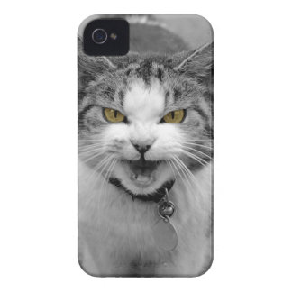 Angry Cat iPhone 4 Case-Mate Cases