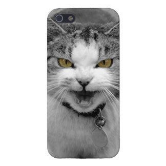 Angry Cat iPhone 5 Cases