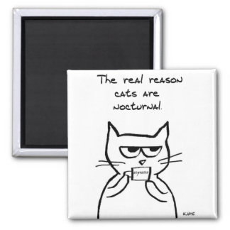 Angry Cat Keeps You Up at Night 2 Inch Square Magnet