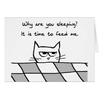 Angry Cat Wants You Out of Bed Card