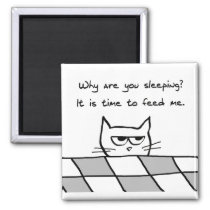Angry Cat Wants You Out of Bed Magnet