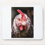 Angry Chicken Mouse Pad