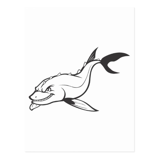 Angry Chinese Sturgeon Fish in Black and White Postcard