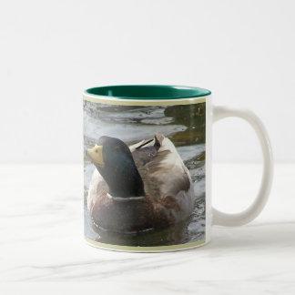Angry Drake Two-Tone Coffee Mug