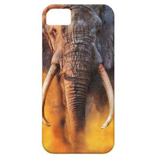 Angry elephant iPhone SE/5/5s case