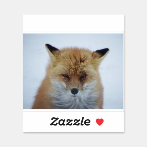 Angry fox sticker