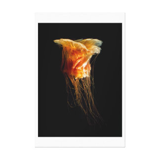 Angry Jellyfish Canvas Print