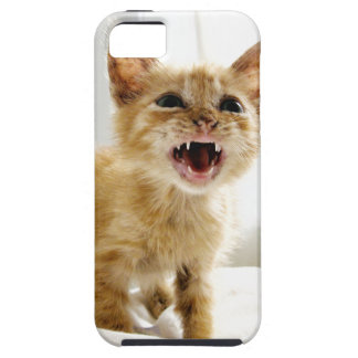 Angry Kitten iPhone SE/5/5s Case