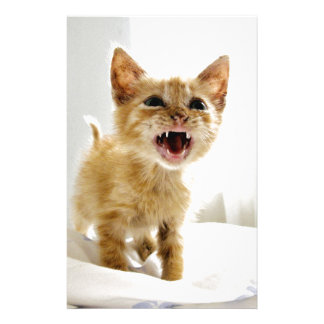 Angry Kitten Stationery