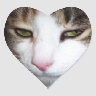 Angry kitty face funny heart shaped stickers
