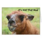 Angry Llama Humorous 40th Birthday Card
