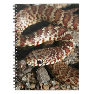 Angry Looking Snake Spiral Notebooks
