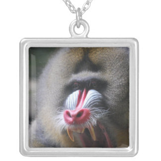 Angry Mandrill Necklaces