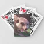 Angry Meerkat Playing Cards