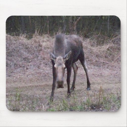 Angry Moose Mousepad