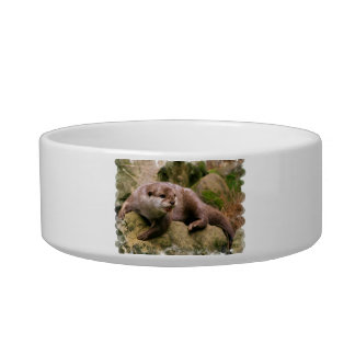 Angry Otter Pet Bowl