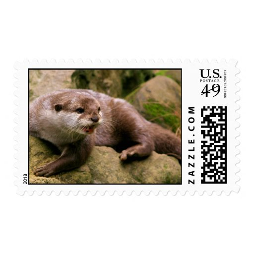 Angry Otter Postage Stamp