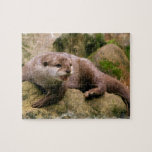 Angry Otter Puzzle