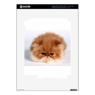 Angry Persian Puff Ball Kitten Skin For iPad 3