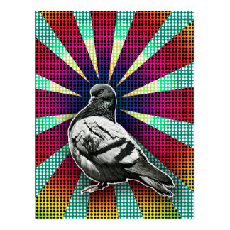 Angry Postcard Pigeon