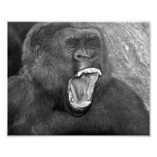 "Angry Primate ""Patrick"" Photographic Print"