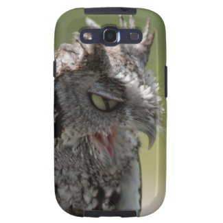 Angry Screech Owl Samsung Galaxy S3 case