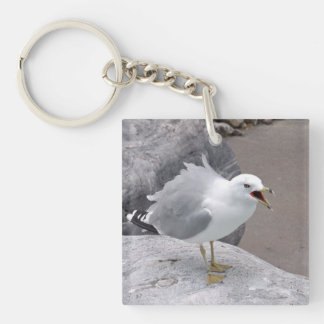Angry Seagull Double-Sided Square Acrylic Keychain
