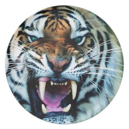 Angry Tiger Abstract Animal Print Africa Dinner Plates