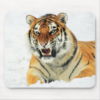 Angry tiger lying in snow mouse pad