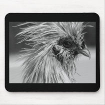 Angry Wet Silkie Chicken Mouse Pad