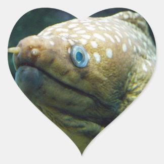 Anguila de Moray manchada Pegatina En Forma De Corazón