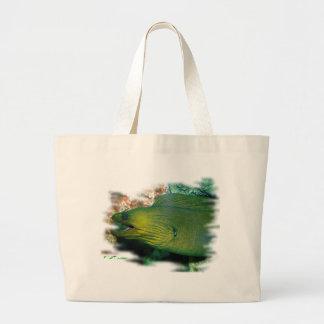 Anguila de Moray verde de Famouse Bolsas