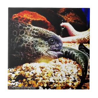 Anguila manchada azulejo cuadrado pequeño