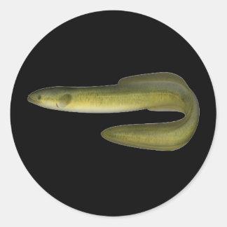 Anguila verde pegatina redonda