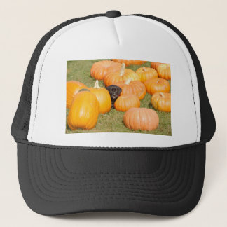 Angus and the pumpkins trucker hat