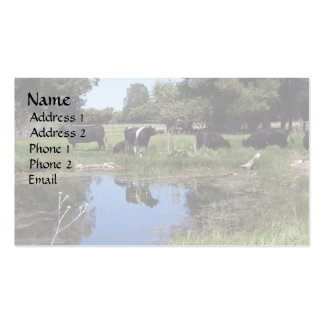 Angus At the Pond Double-Sided Standard Business Cards (Pack Of 100)