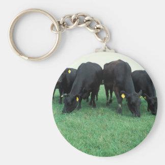 Angus cattle keychain