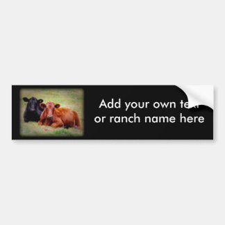 Angus Love - Pair of Cattle Side by Side Bumper Sticker
