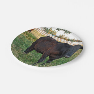 Angus steer in green fields 7 inch paper plate