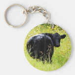 Angus Steer in Tall Yellow Grass Basic Round Button Keychain