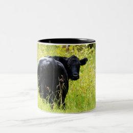 Angus Steer in Tall Yellow Grass Two-Tone Coffee Mug