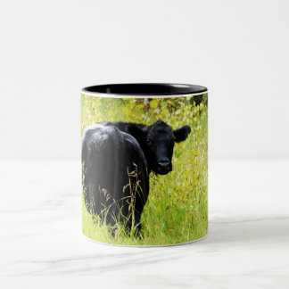 Angus Steer in Tall Yellow Grass Two-Tone Coffee Mug