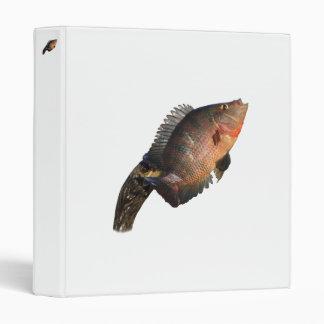 anhinga displaying fish vinyl binder