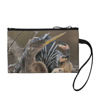 Anhinga...Living in the Sticks Coin Purse