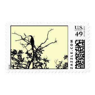 Anhinga Silhouette Stamp