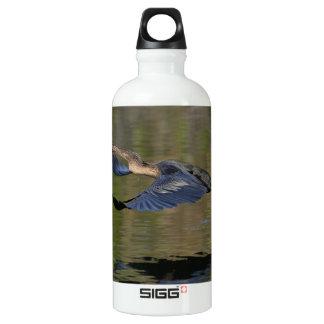 Anhinga Takeoff Aluminum Water Bottle