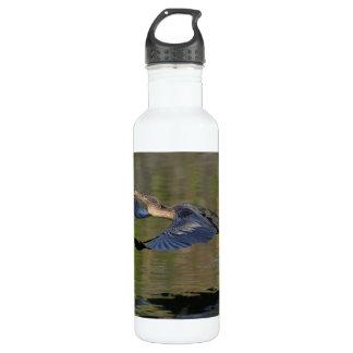 Anhinga Takeoff Water Bottle