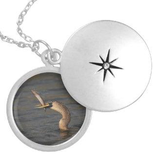 Anhinga with Fish Round Locket Necklace
